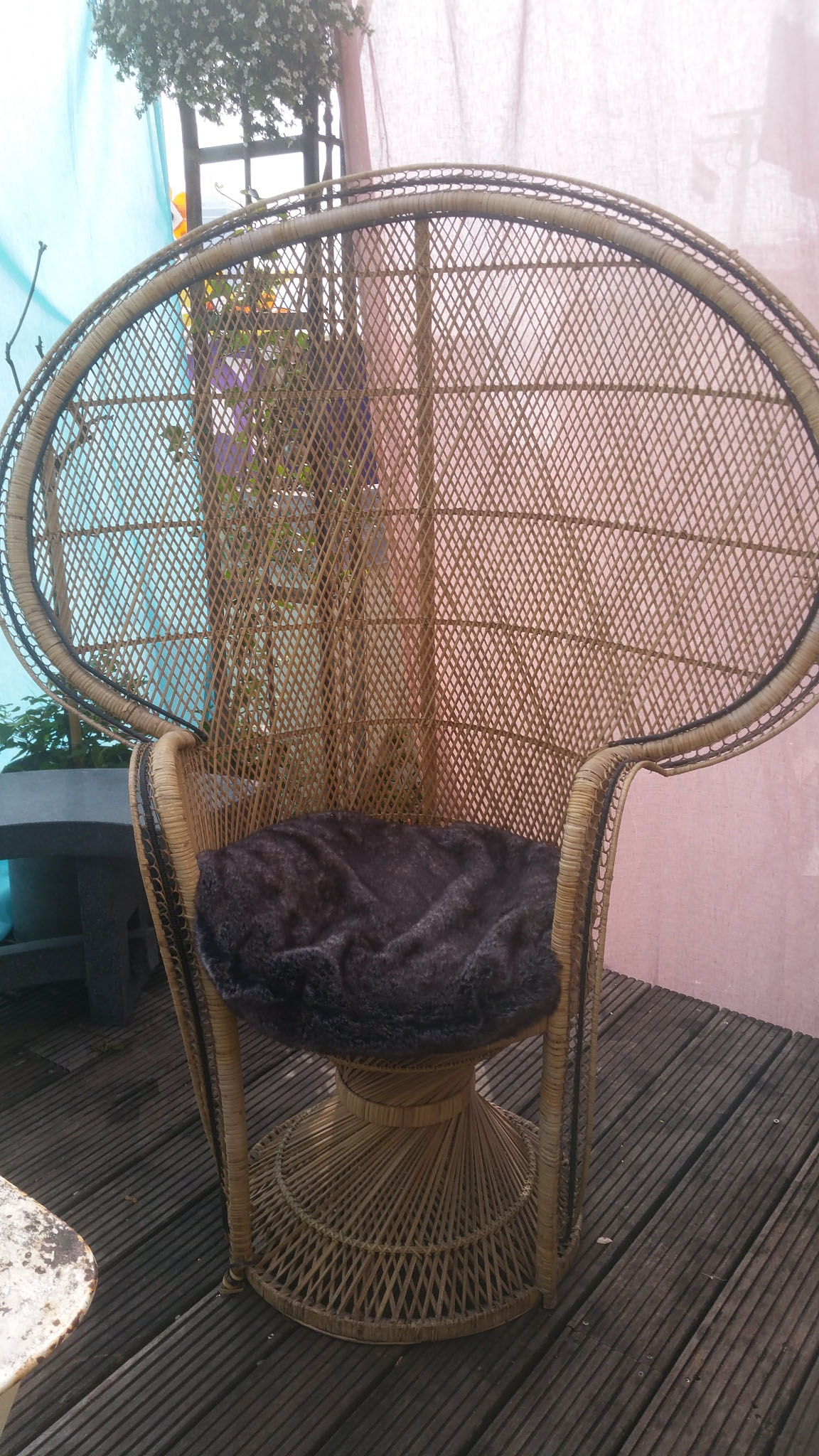 00154 peacock chair XL